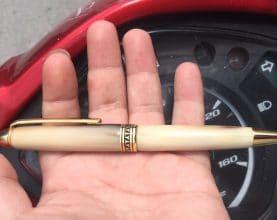horn pen - buffalo horn pen