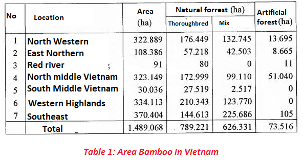 Area Bamboo forest in Vietnam