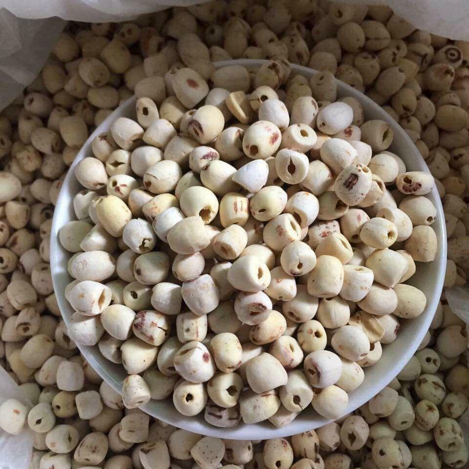 dried lotus seed Vietnam